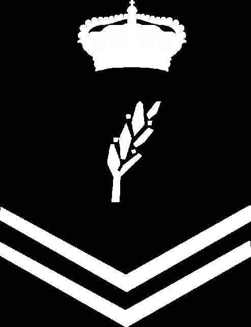Logo_PN-BASICA_Blanco_blanco